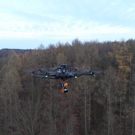 3D-Scan-Forst-Wald-Forestry-GeoSLAM-ZEB-HORIZON-3D-mobile-Scanner-UAV-Laserscanner