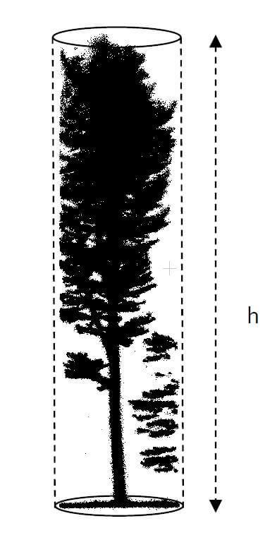 Forstinventurrelevanten-Baumparametern-aus-UAV-LiDAR-Befliegung-Begehung-Forstwirtschaft-Baum-Hoehe-Stamm-Stammprofil-Stammvolumen
