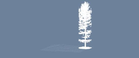 Screenshot-Punktwolke-Baum-DGM-Digitales-Gelaendemodell-Wald-Waldboden-Daten-UAV-LiDAR-Befliegung-Begehung-von-einem-Waldgebiet-Bestimmung-von-Biomasse-Kohlenstoffgehalt