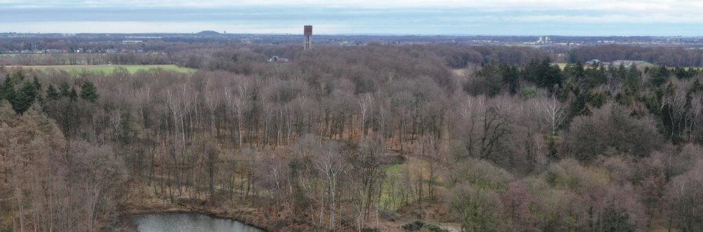 UAV LiDAR Befliegung und Begehung eines Waldgebiets zur Bestimmung von Biomasse und Kohlenstoffgehalt