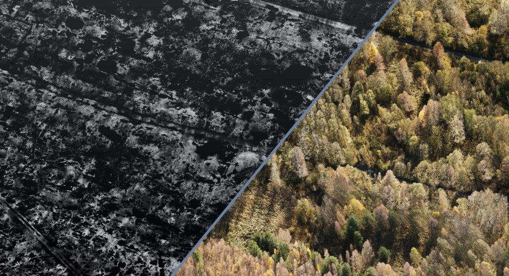 LOGXON-Grafik-klassifizierte-Punktwolke-in-Bodenpunkte-und-Nichtbodenpunkte-Digitale-Gelaendemodelle-Hoehenmodelle-Oberflaechenmodelle-DGM-DHM-DOM